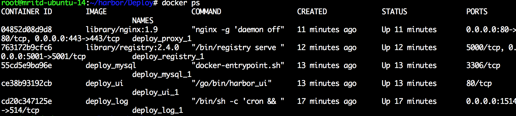 hexo_docker_harbor_contianer